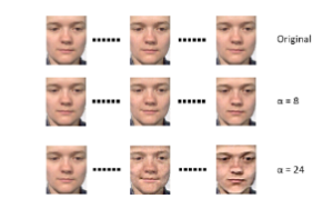 Microexpressions magnified at different levels